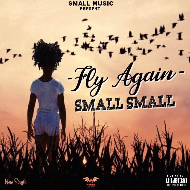 Small Small – Fly Again