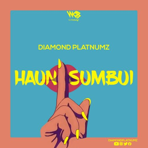 Diamond Platnumz – Haunisumbui (Lyrics)