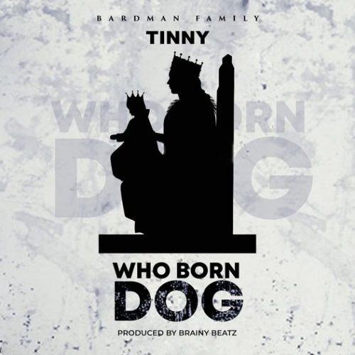 Tinny – Who Born Dog