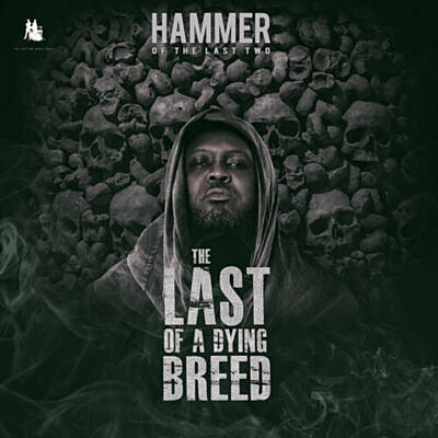 Hammer of The Last Two – 4 Decades (feat. Nana Asaase)